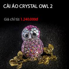Cài áo crystal owl 2
